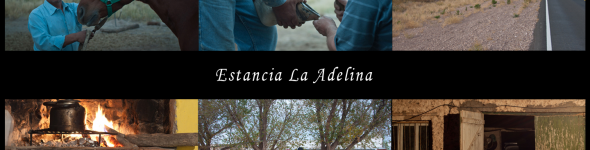 Estancia La Adelina, Road 151, KM unknown, La Pampa, Argentina